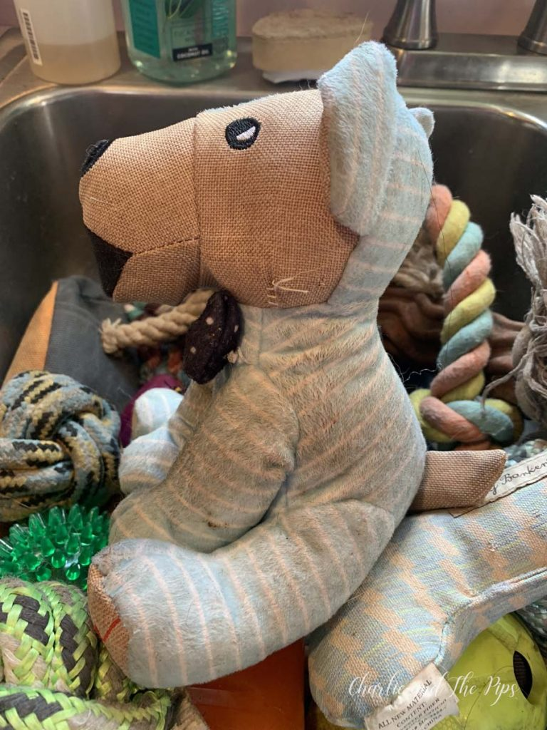 If you have dogs, you have dog toys. There's nothing worse than smelly dog toys! I'll show you how to clean dog toys in a safe, healthy,easyway!