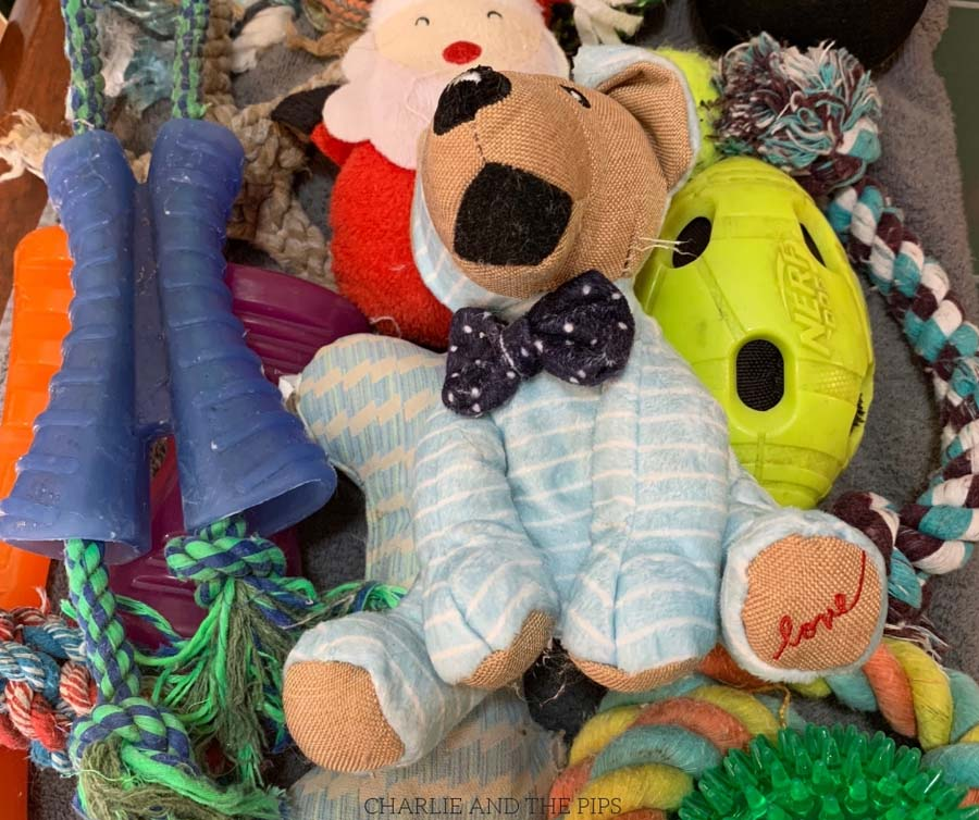 If you have dogs, you have dog toys. There's nothing worse than smelly dog toys! I'll show you how to clean dog toys in a safe, healthy, easy way!